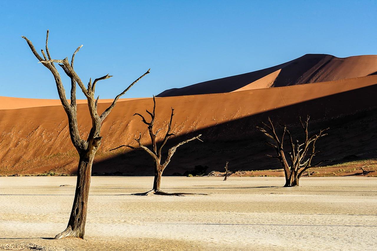08-fotoreis-namibie0005